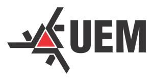 assinatura-uem-2015-modelo-01